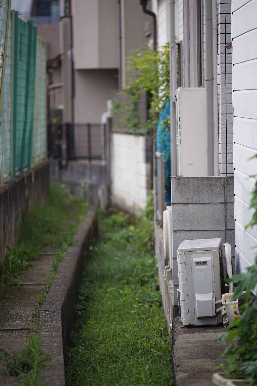 Nikkor-Q C Auto 200mm F4 で ちょっと散歩_b0069128_08425519.jpg