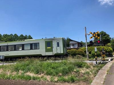初夏の棒道ウォーク(下見)_f0019247_20404937.jpg