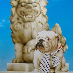 《 6月の犬さん 》_c0328479_15510119.jpg