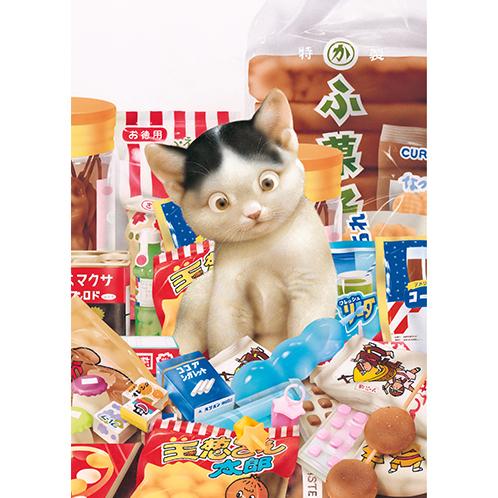 《 6月の猫さん 》_c0328479_16441457.jpg