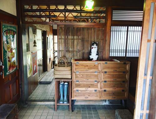 うちの招き猫と新しい下駄箱。_d0077603_18123232.jpg