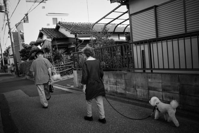 2020.06.18 散歩_a0390712_16072739.jpg