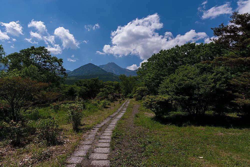 美し森風景_b0179231_22464581.jpg