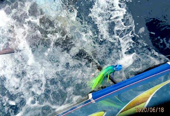 本日の凪の海で2T&R成功_f0009039_17194463.jpg