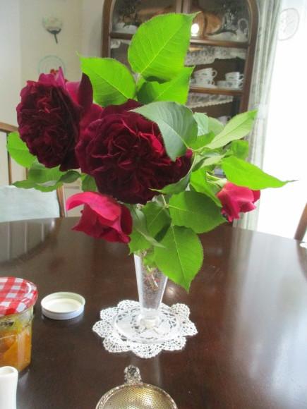 薔薇が少しづつ咲きだした~(^^♪_a0279743_12554018.jpg