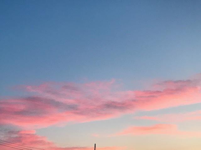 3日連続の青空♪_f0242002_17501763.jpg