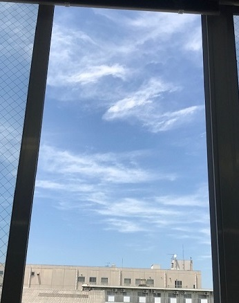 3日連続の青空♪_f0242002_18001024.jpg