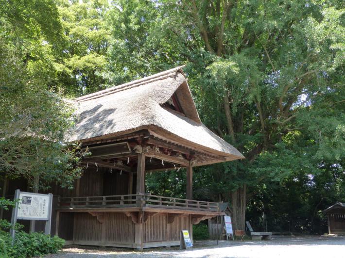 玉敷神社の紫陽花_f0296312_18411069.jpg