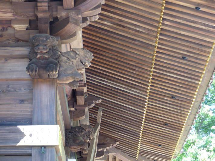玉敷神社の紫陽花_f0296312_18431258.jpg