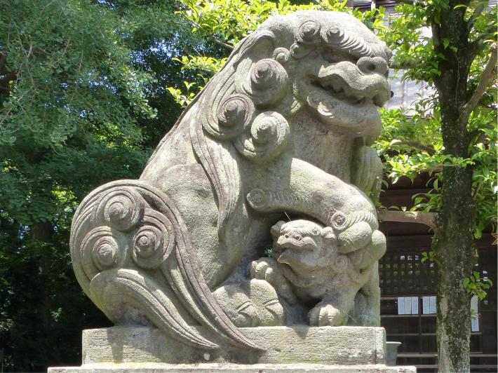 玉敷神社の紫陽花_f0296312_19330140.jpg