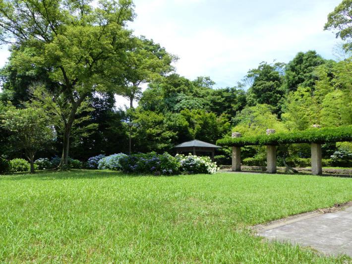 旧河野邸跡地と紫陽花_f0296312_21365394.jpg