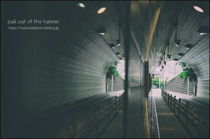トンネル抜けて_f0100215_19373824.jpg