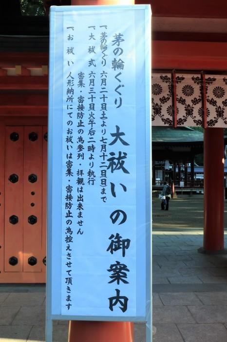 大宮 氷川神社 「茅の輪くぐり」_d0150720_16382144.jpg