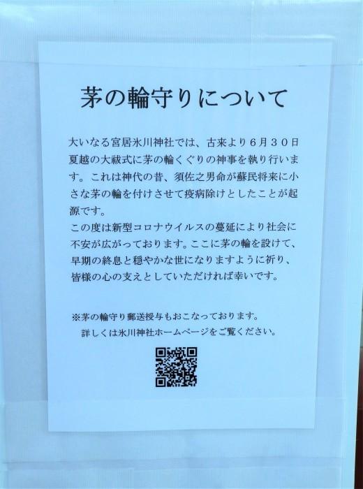 大宮 氷川神社 「茅の輪くぐり」_d0150720_16393540.jpg