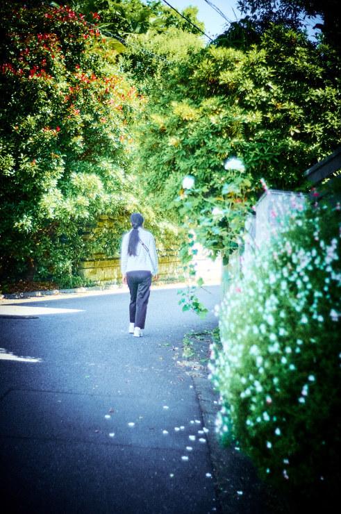 朝の散歩(3cut) _e0342136_18460022.jpg