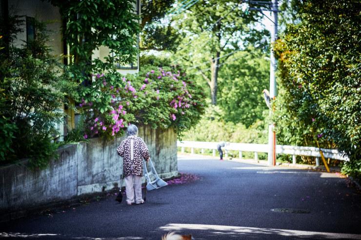 朝の散歩(3cut) _e0342136_18462764.jpg