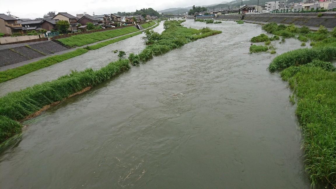 6月19日河川情報。 ..._c0266737_07185546.jpg