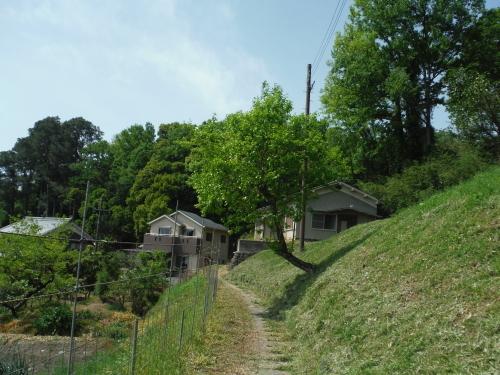 山の辺の道 サイクリング_b0332867_09485071.jpg