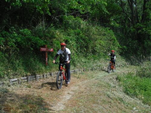 山の辺の道 サイクリング_b0332867_09494744.jpg