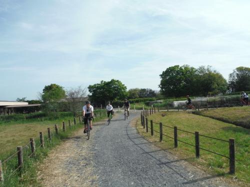 山の辺の道 サイクリング_b0332867_09582920.jpg