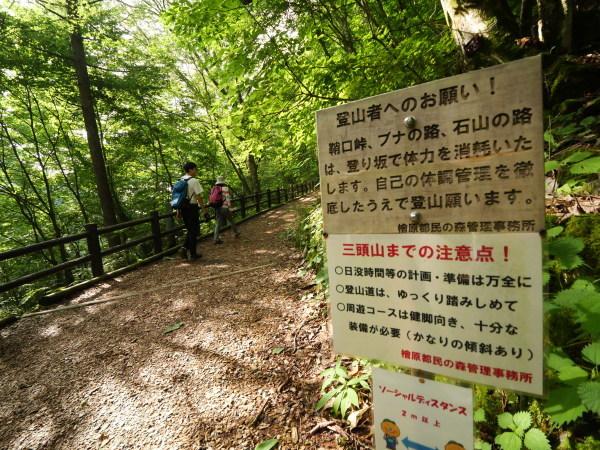 東京 楽しい森歩き_a0351368_22464859.jpg