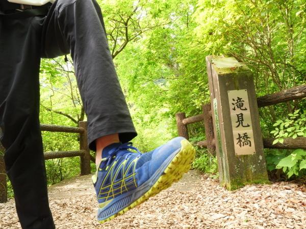 東京 楽しい森歩き_a0351368_22474555.jpg