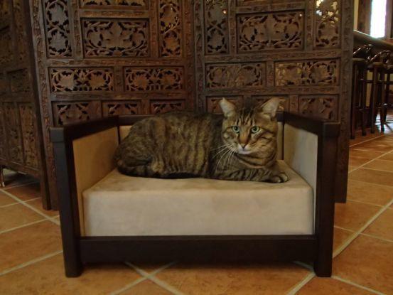 素晴らしいアンティーク調の犬猫用ベッド_f0064906_13561367.jpg