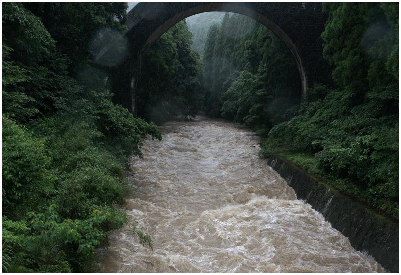 雨の中_b0037717_16223692.jpg