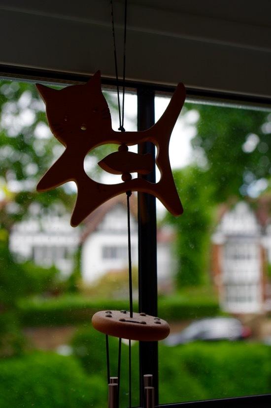 イギリスでは今日が夏至、家の中でも光の楽しみ_e0114020_16421921.jpg