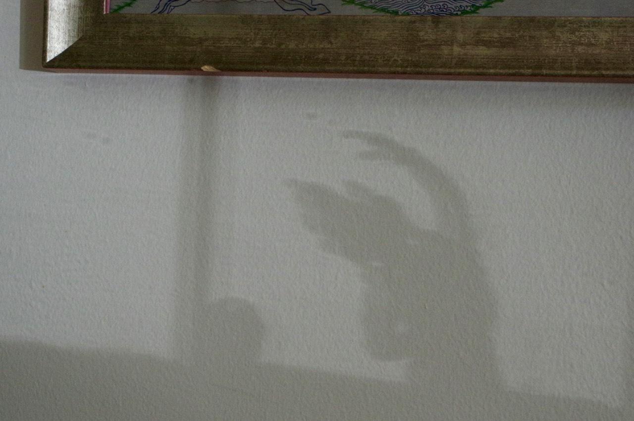イギリスでは今日が夏至、家の中でも光の楽しみ_e0114020_16433365.jpg