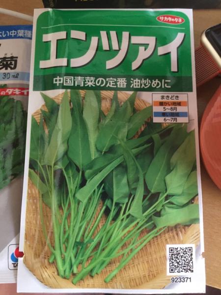 春菊と空芯菜、蒔いてみました_f0101128_09445172.jpg