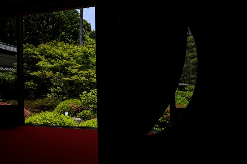 サツキ咲く雲龍院(泉涌寺塔頭)_f0155048_0172059.jpg