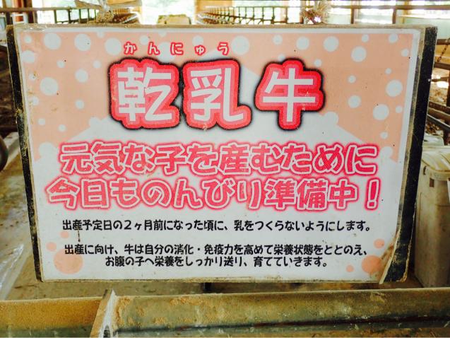 """【成田ゆめ牧場日記】ソーシャル\""""ウシ\""""タンスでみんなラブラブ♡_e0397681_21251465.jpg"""