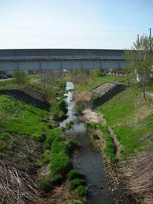 新川まきばを歩く-公園で知る昔の地名-(1)_f0078286_06292499.jpg
