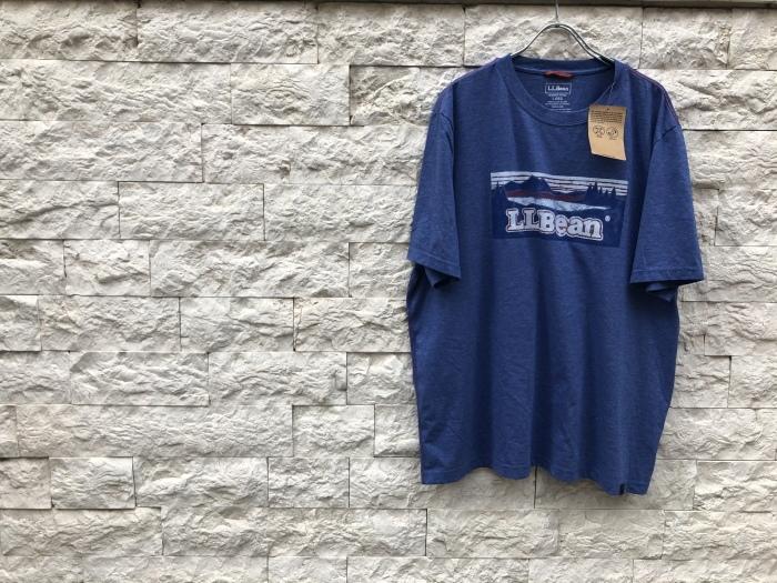 Tシャツ&ミリタリー_b0247211_20174617.jpeg