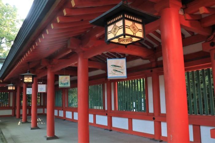 大宮 氷川神社 「茅の輪くぐり」_d0150720_16052840.jpg