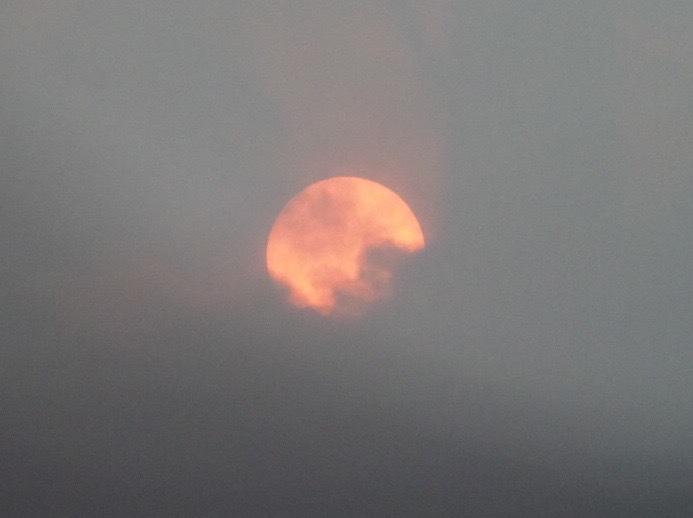 2020年の日食、雲に阻まれる。_d0052327_19415019.jpg