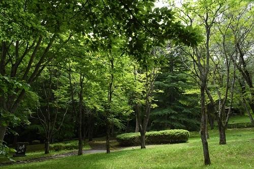 八戸公園_c0299631_16534546.jpg