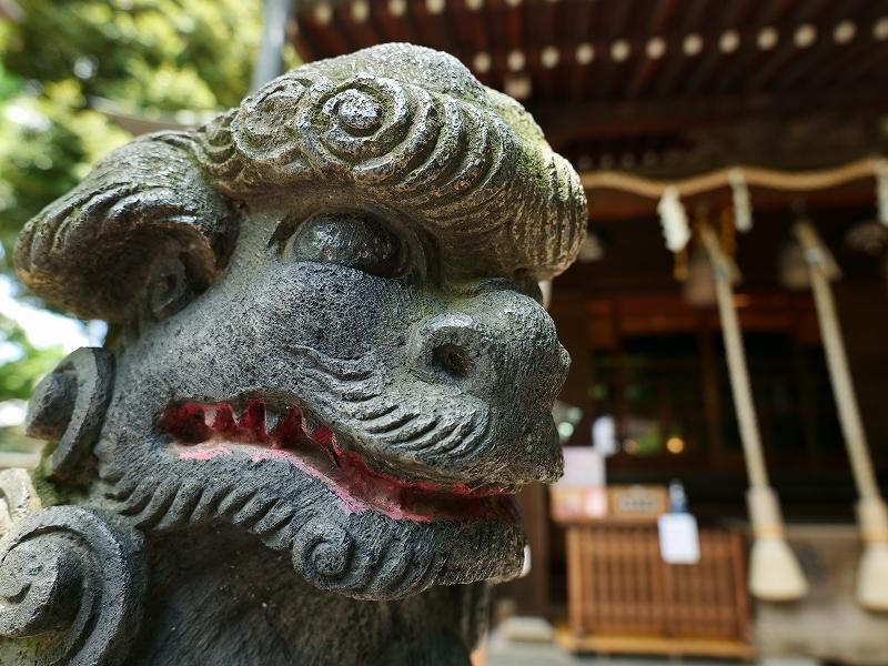 北区 七社神社 by LUMIX20-60mm_f0050534_10171158.jpg