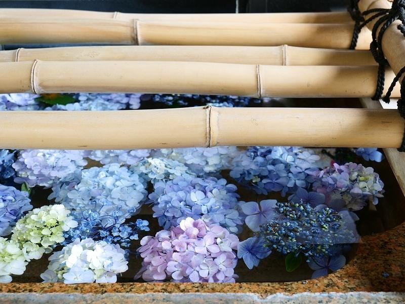 北区 七社神社 by LUMIX20-60mm_f0050534_10175916.jpg
