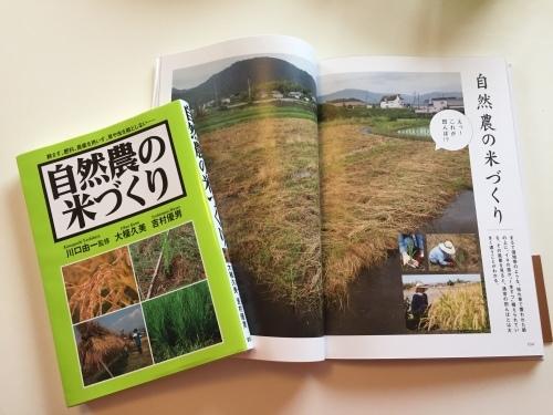 自然農の田んぼ_c0331145_20141567.jpg