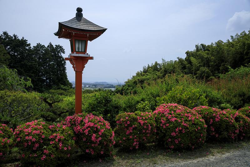 サツキ咲く正法寺(西山)_f0155048_2351881.jpg