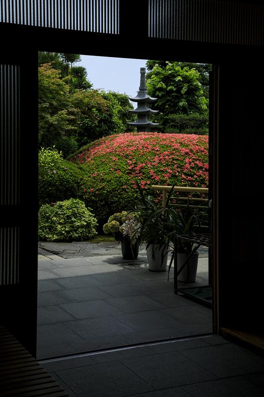 サツキ咲く正法寺(西山)_f0155048_2355186.jpg