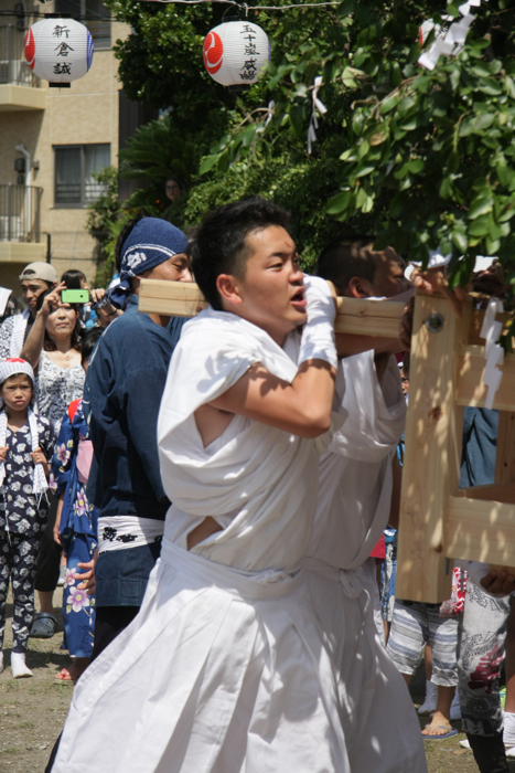 秋谷神明社御祭禮−1_f0156448_01163140.jpg