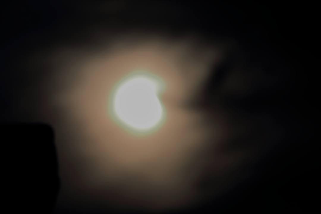 部分日食と「紫陽花に蝶」_e0403850_22453761.jpg
