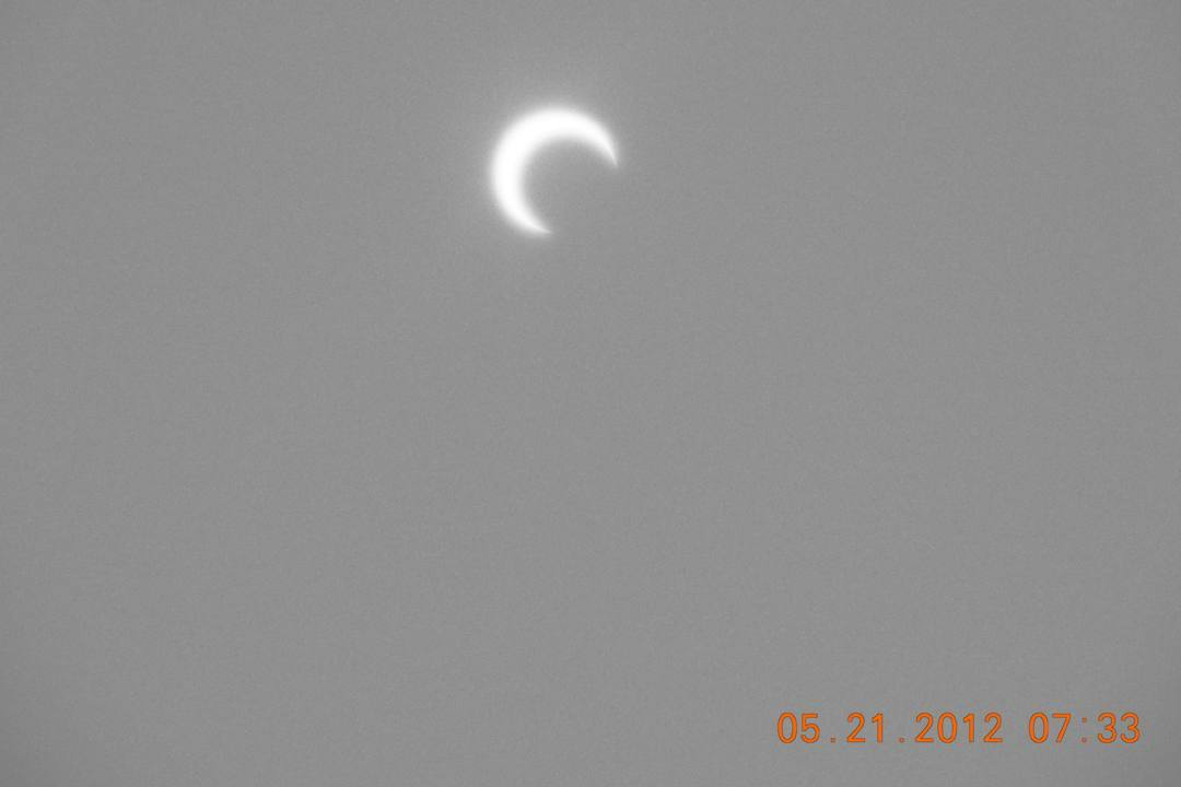 部分日食と「紫陽花に蝶」_e0403850_22460558.jpg