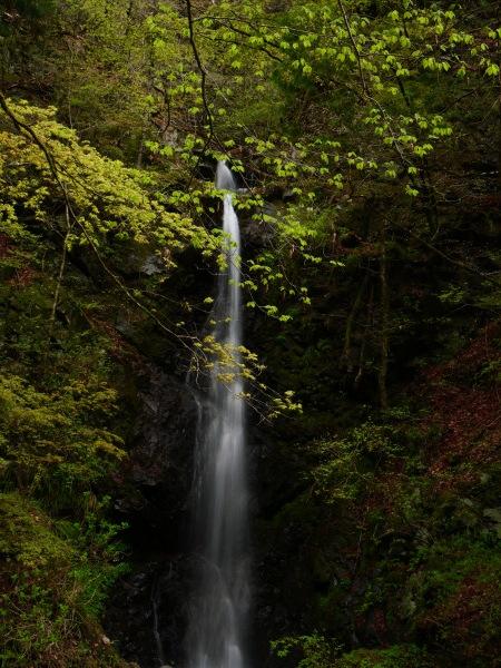 檜原村 滝巡り 龍神の滝_a0351368_23362263.jpg