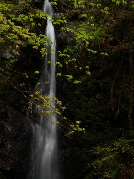 檜原村 滝巡り 龍神の滝_a0351368_23365878.jpg