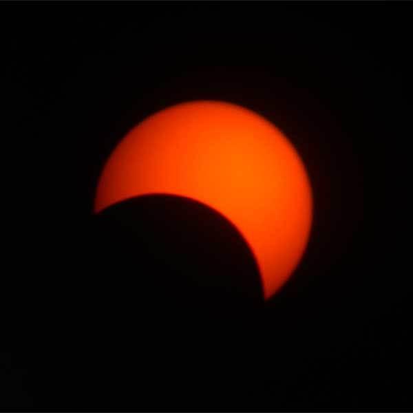 日食でしたねえ_b0163788_21003608.jpg