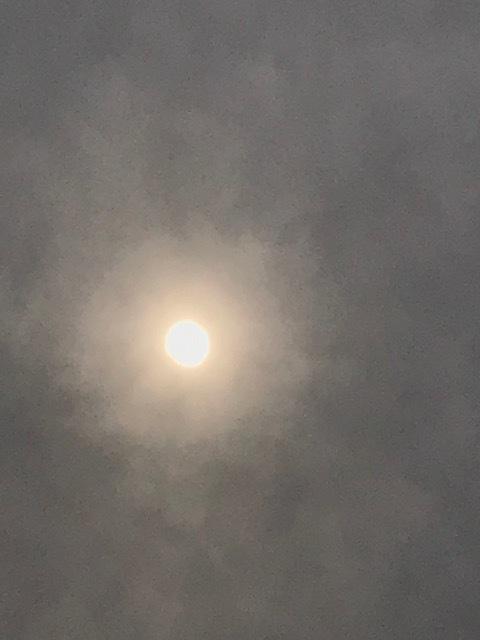日食_f0204295_18312104.jpg